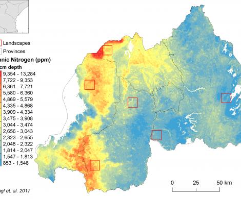 Rwanda - organic Nitrogen