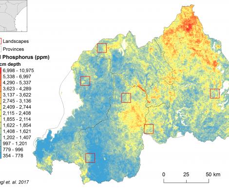 Rwanda - total Phosphorus